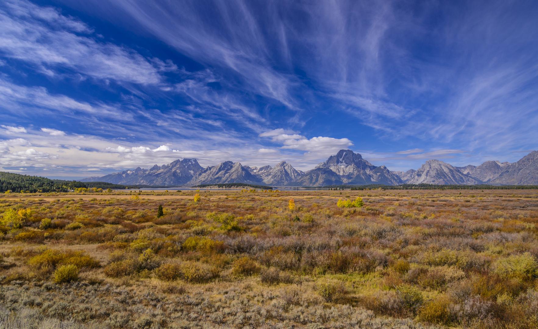 Willow Flats gegen Teton Range, Wyoming, USA