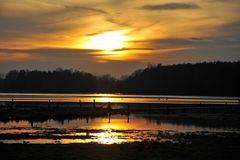 Wilsche im Hochwasser 2011