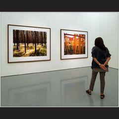 Wim Wenders – Photographien