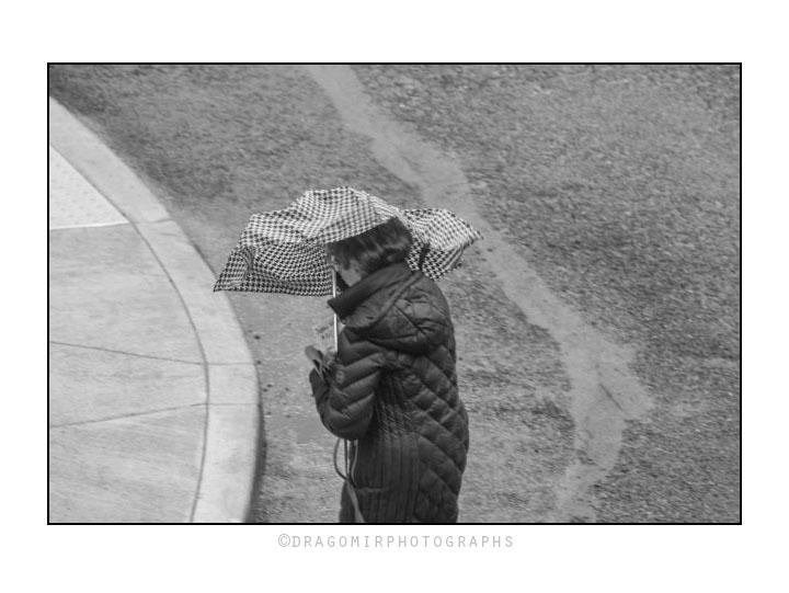 Wind And Rain p