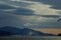 Wind auf dem Fjord