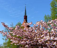 Wind aus Süd-Ost zeigt die Wetterfahne des Dachreiters auf der Mönchskirche in Salzwedel an.