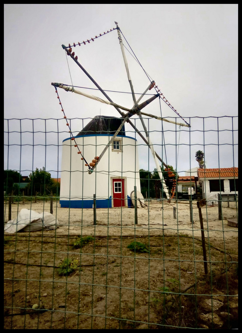 Wind mill that works in ours days