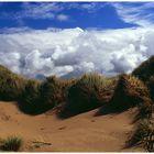 Wind über den Dünen