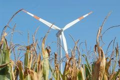 Windenergie im Herbst am Niederrhein