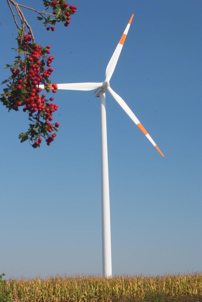 Windenergie im Herbst