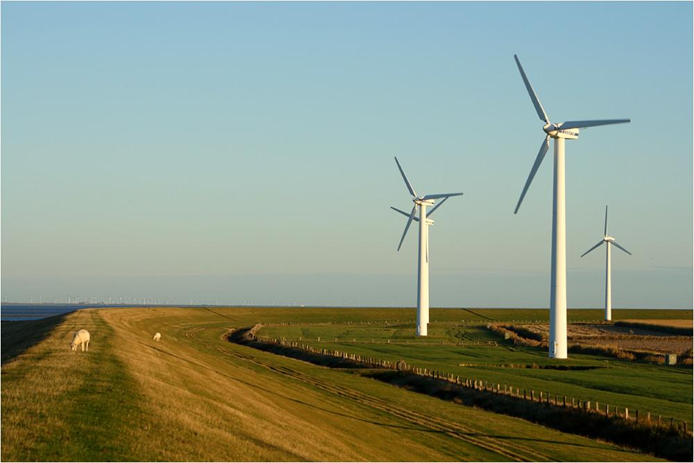 Windkraft Schleswig Holstein