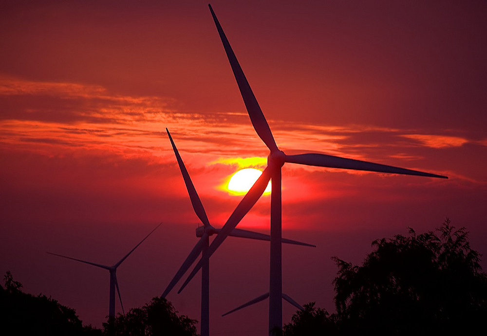 Windkraft pur