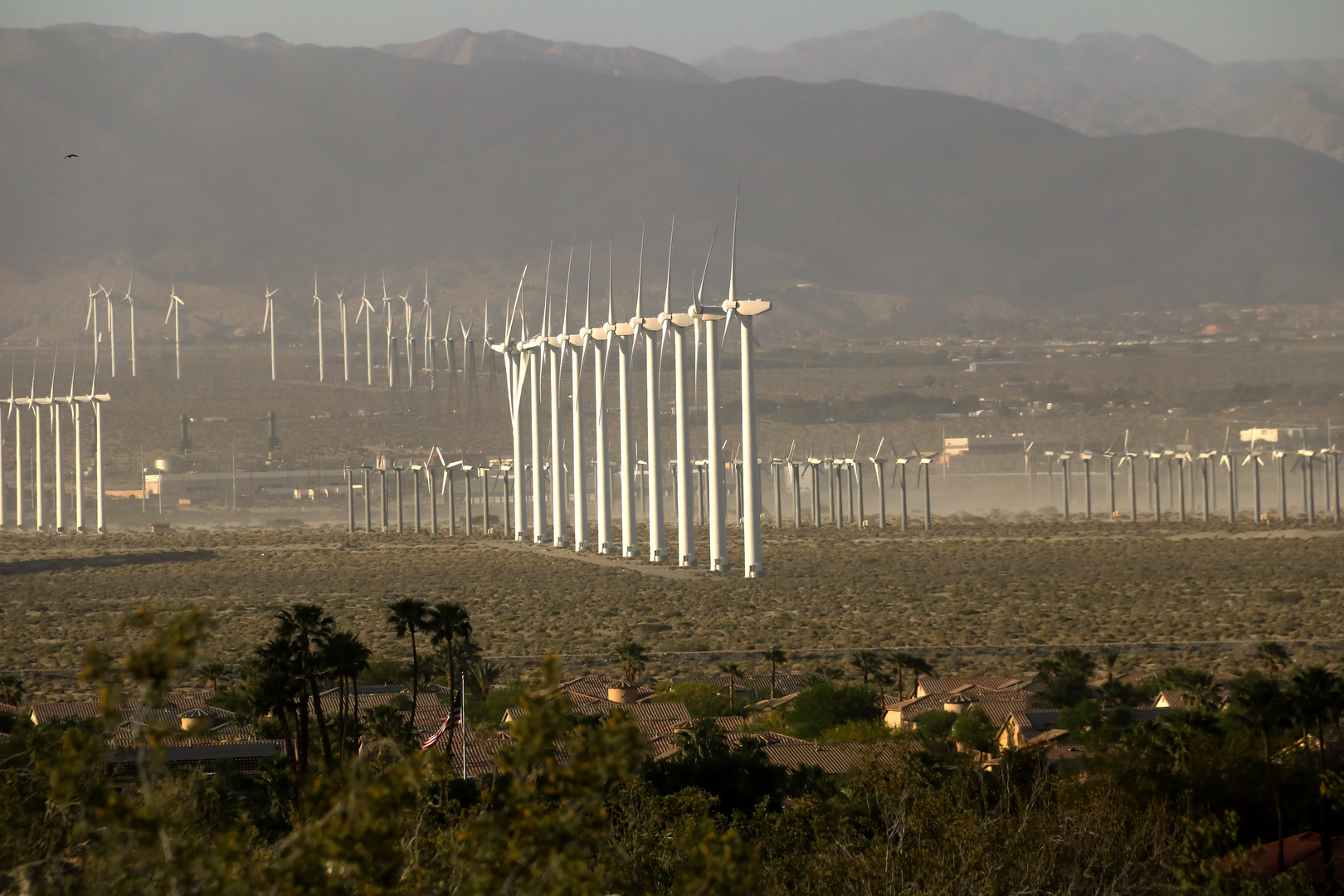Windmills in Palm Springs
