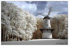 Windmolen <Infrarot>