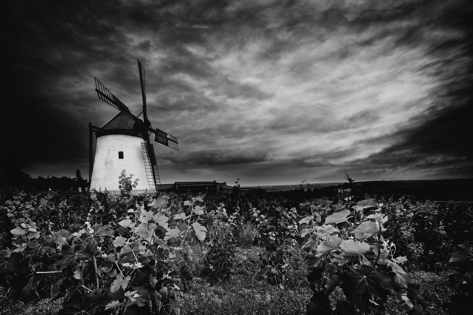 Windmühle bei Retz NÖ (A)