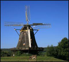 Windmühle im Hessenpark II