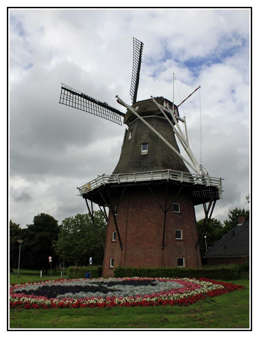 Windmühle in Delfzijl NL