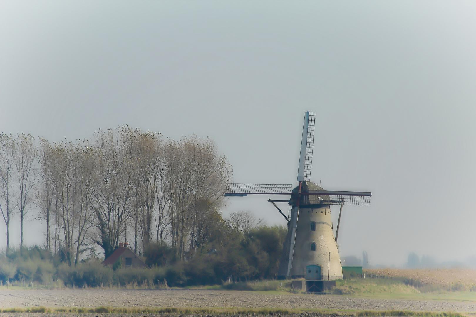 Windmühle in Westflandern