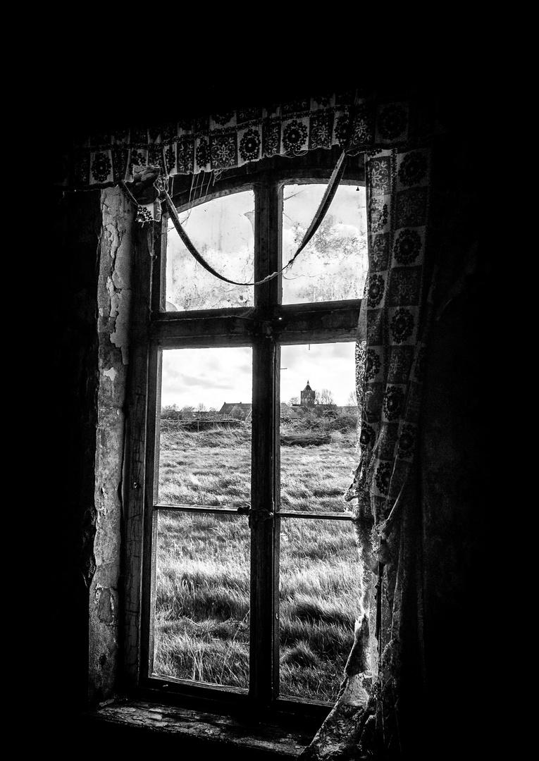 -Window-