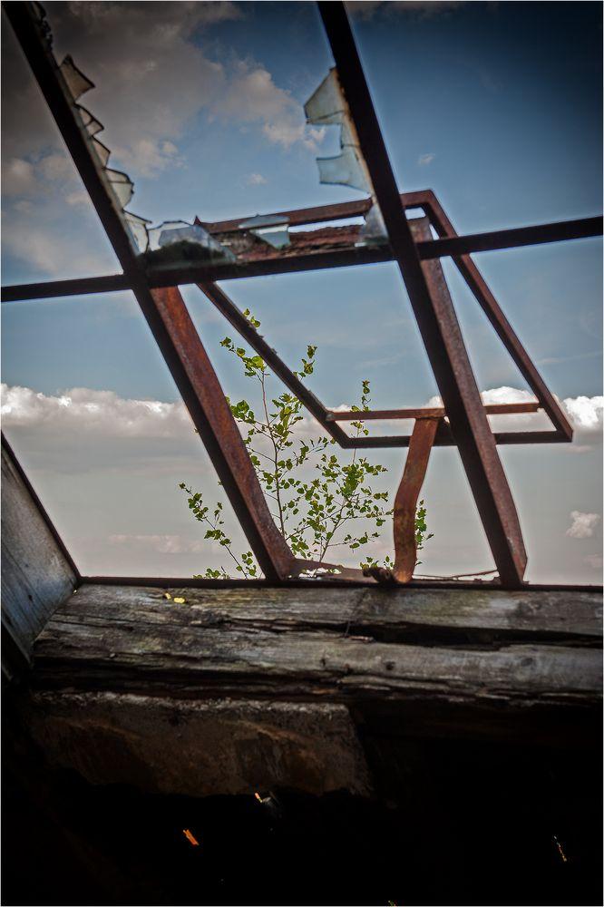 window ...