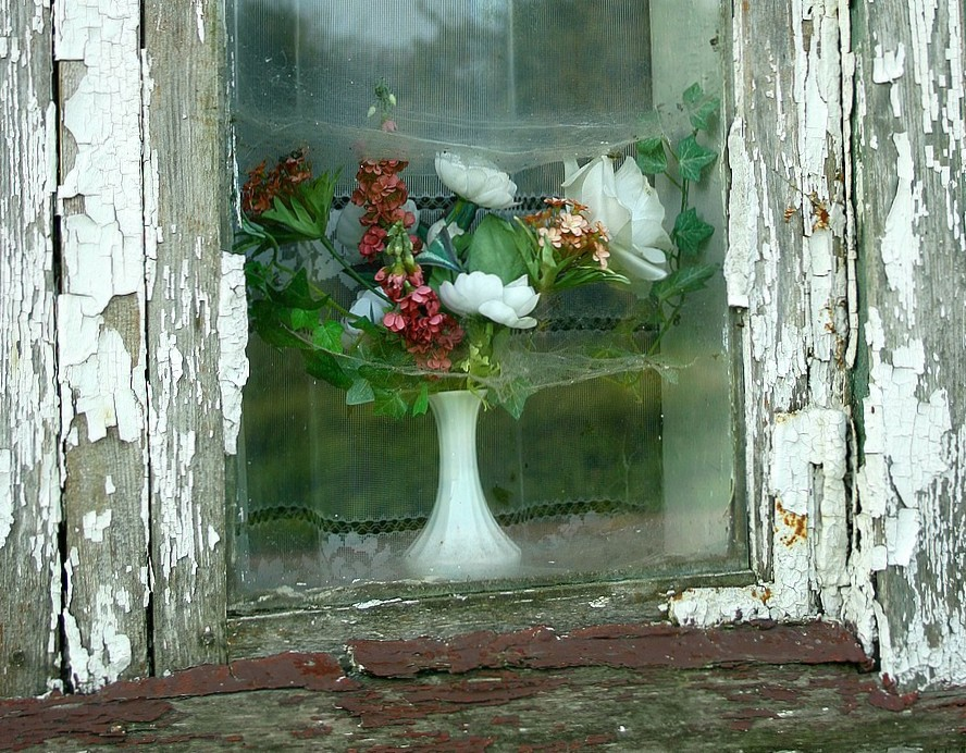 window with affected flowers