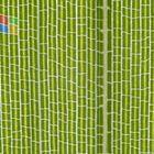 Windows Bambus