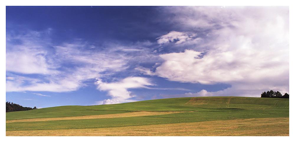 .Windows Vista (?)