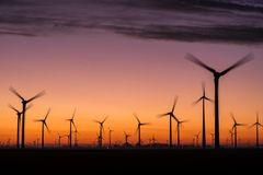 Windpark im Sonnenuntergang