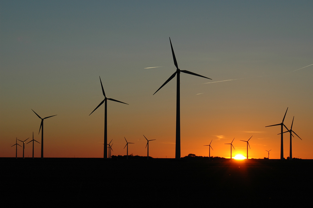 Windpark in Hedwigenkoog bei Büsum