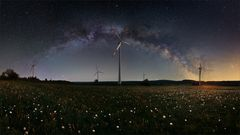 Windpark mit Pusteblumen