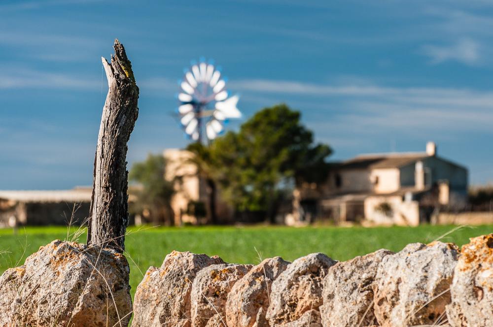 Windrad in der Nähe von Campos
