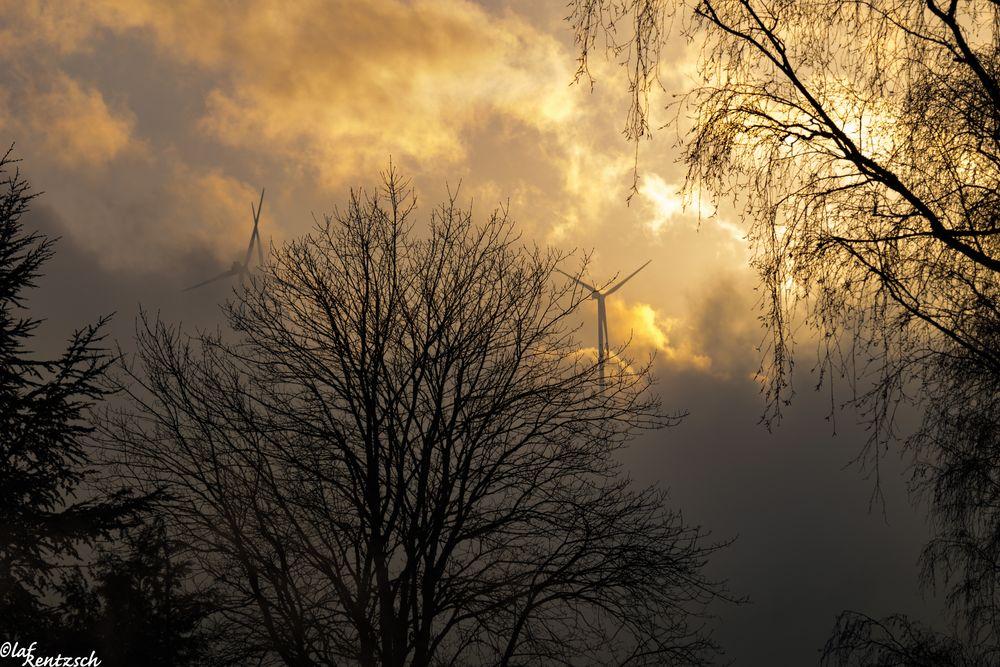 Windräder im Nebel 1