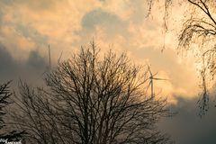 Windräder im Nebel 3