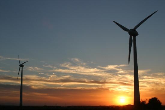 Windräder in Abendstimmung