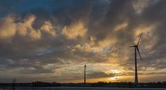 Windräder in der Abendsonne