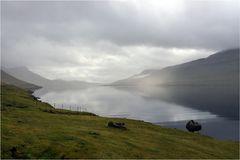 Windstille am Skálafjørður...