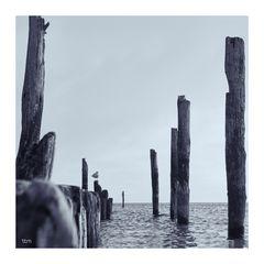 windstiller Morgen an der Ostsee