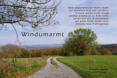 Windumarmt