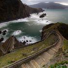 ~~ Windy Trail ~~