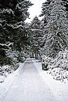 Winter 03 in Hamburg