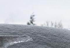 Winter  (1_2)
