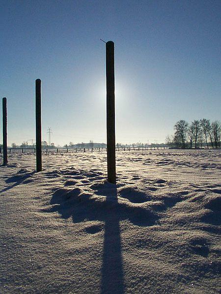 Winter 2001
