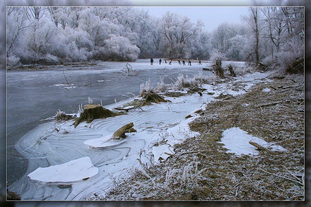 Winter 2007/2008 am Rhein (2)