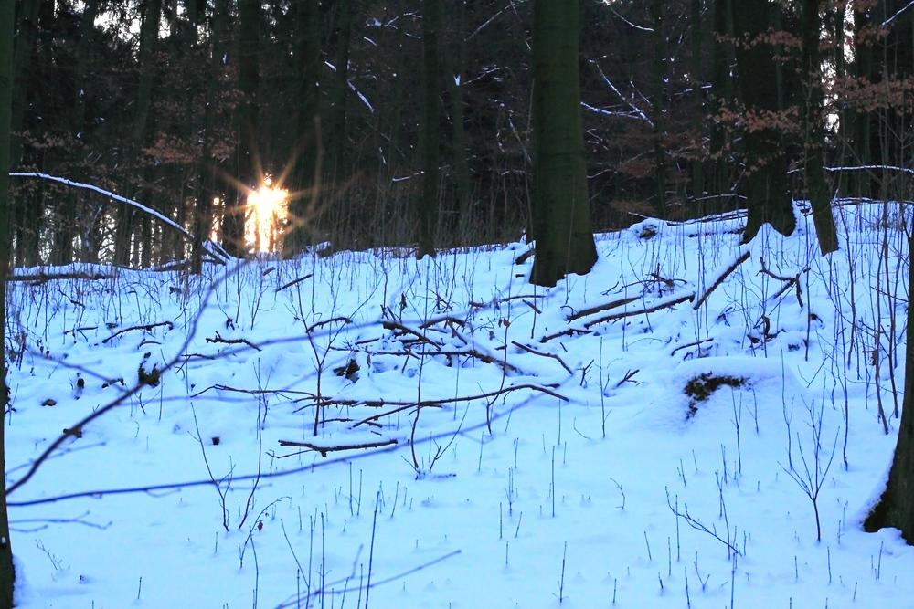 Winter 2009 (19)