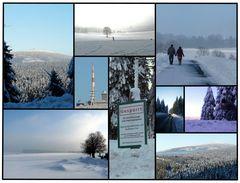 Winter 2010 im Harz