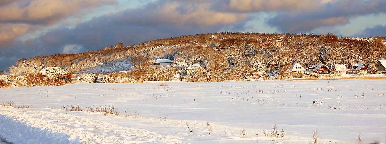 Winter 2010 Insel Hiddensee