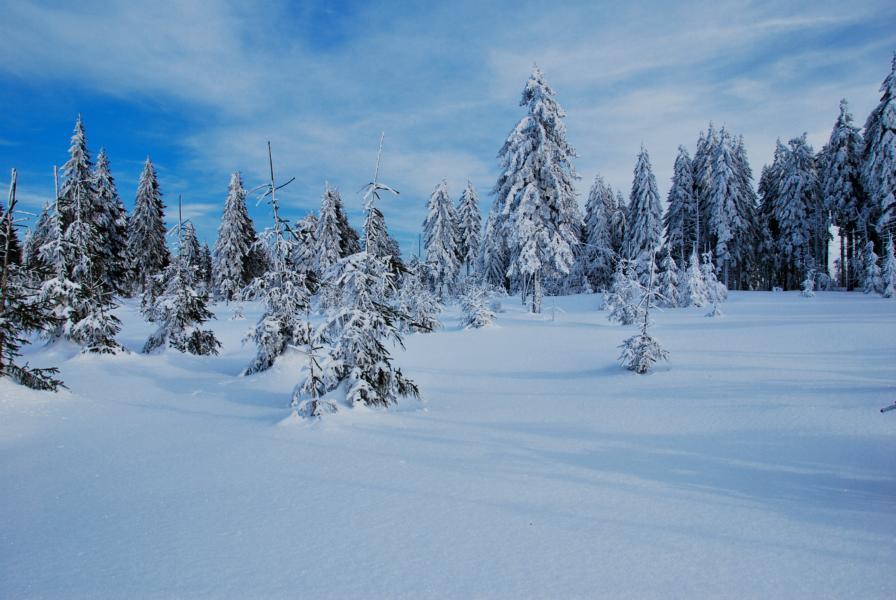 Winter 2012 ( nichts für Weicheier und Radio- und Fernsehmoderatoren)