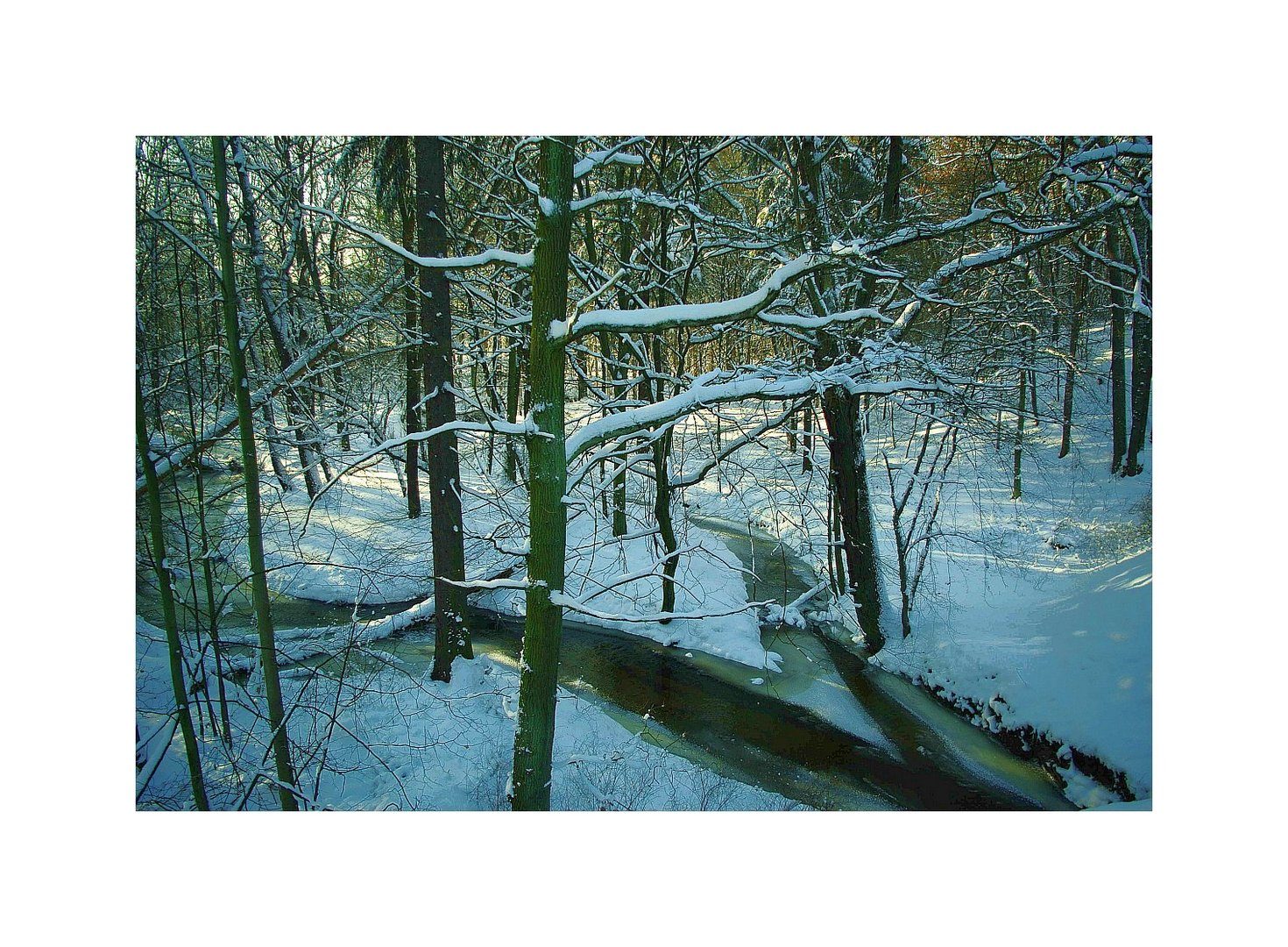 ....Winter....