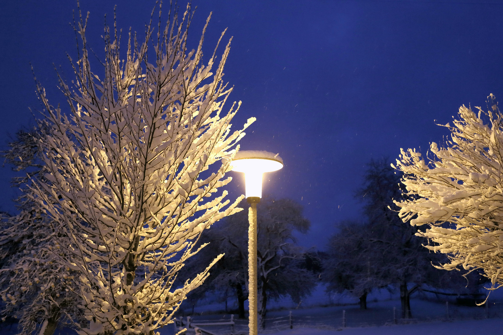 Winter 53