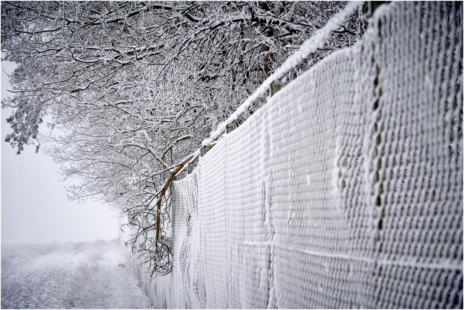**Winter**