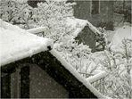 """Winter..."""