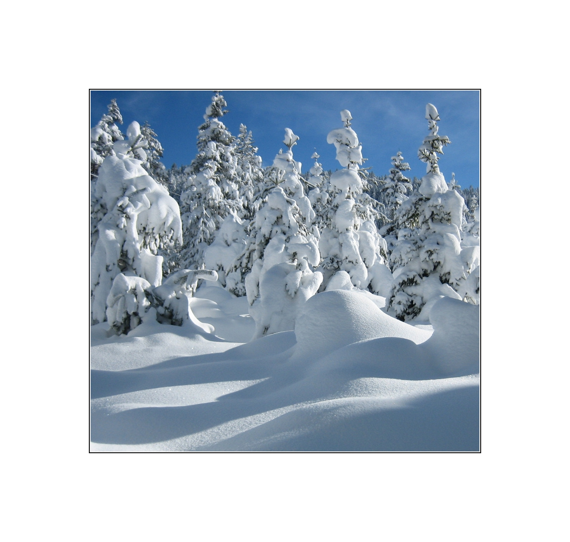 ...winter 8...