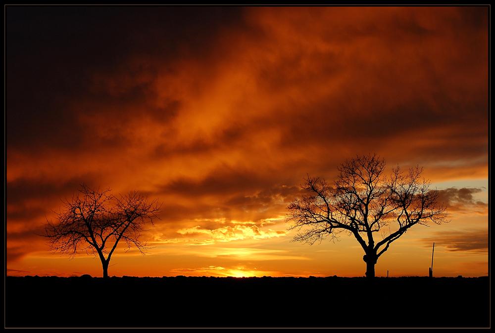 Winter - Abend - Licht