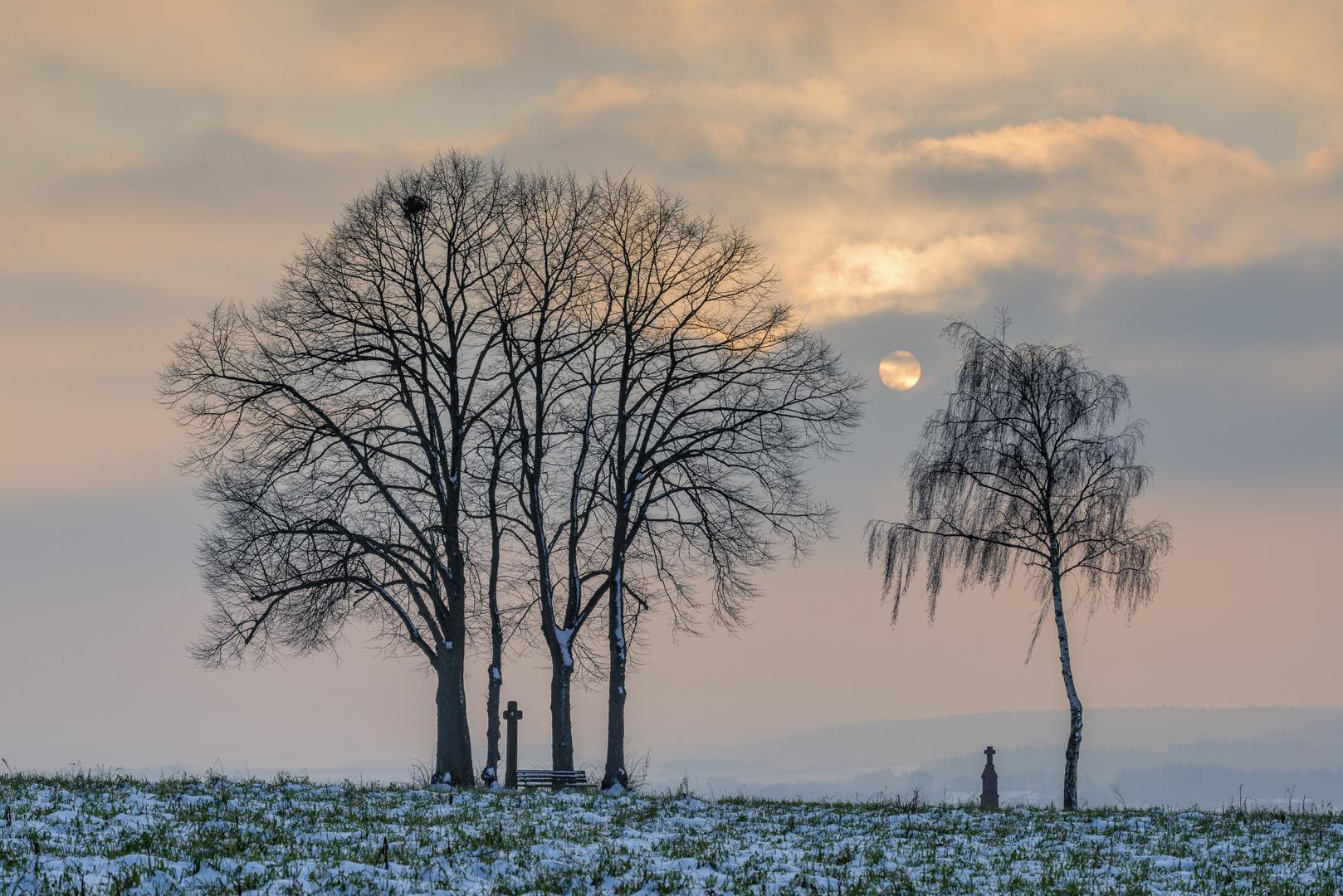 *Winter-Abendsonne im Wittlicher Land*